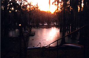 Sunrise from Carter's Bluff at Pine Needle Lodge